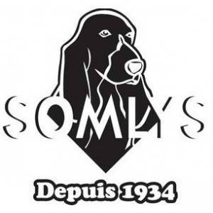 Somlys