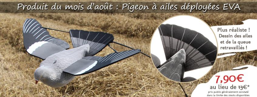 Chasse du pigeon : astuces et conseils pour placer vos blettes
