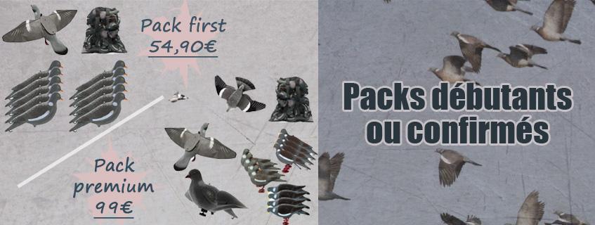 Appelants pigeons