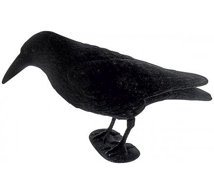 Appelant corbeau floqué avec pattes