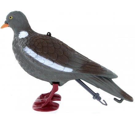 Appelant pigeon ramier avec pattes