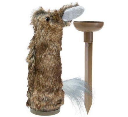 Pack Renard Appeau Flextone Dying Rabbit et Appelant Renard Motion