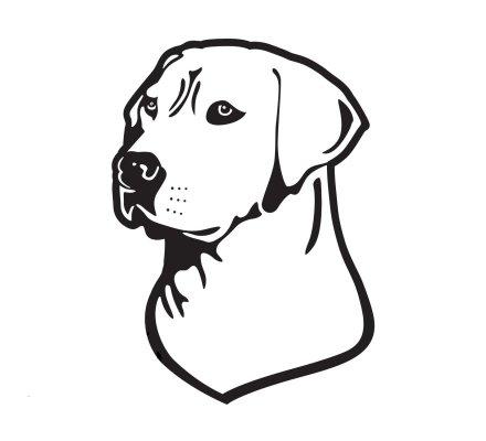 Autocollant chien chasse Labrador