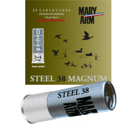 Cartouche Steel 38 cal 12 Mary Arm