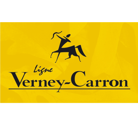 Ceinturon Palombe Verney Carron