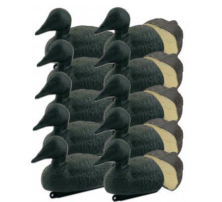 Pack 10 appelants eiders noirs moussés