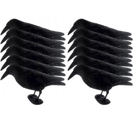 Pack 12  appelants corbeaux floqués avec pattes