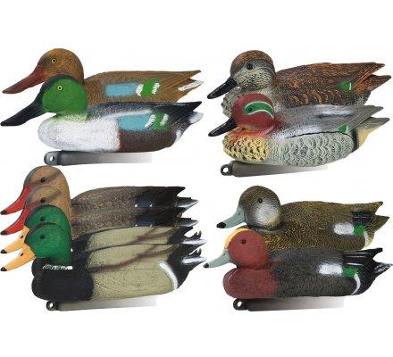 Pack 10 appelants couple canard colvert, sarcelle, siffleur, souchet