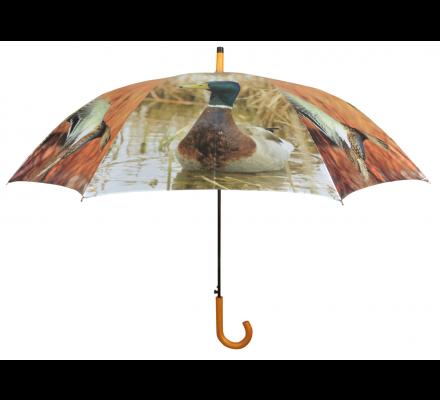 Parapluie canard