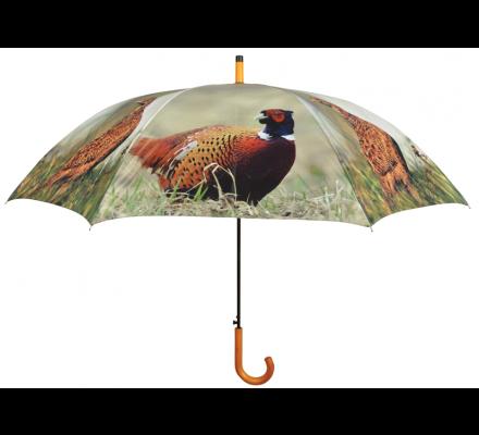 Parapluie faisan