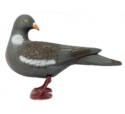 Pack 12 pigeons ramiers actifs avec pattes