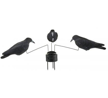 Manège à corbeaux