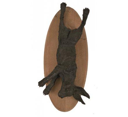 Trophée lièvre nature morte en bronze