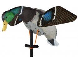 Appelant colvert mâle magnum ailes tournantes électriques super Lucky HD LUCKY DUCK