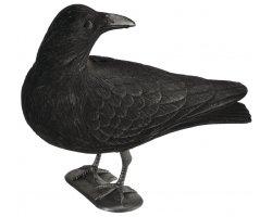 Appelant corbeau guetteur floqué avec pattes