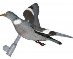 appelant pigeon à ailes déployées