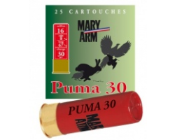 Cartouche_1_PUMA_30_cal_16_Mary_Arm_cote_chasse