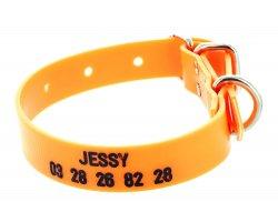 Collier gravé PVC petit chien orange fluo
