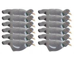 Pack 12 appelants pigeons coquilles (creux) floqués