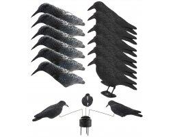 Pack appelants corbeaux et manège à corbeaux