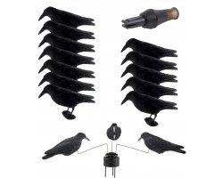 Pack premium 12 appelants, appeau et manège à corbeaux