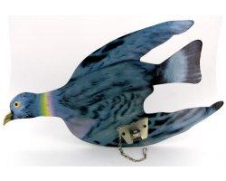 pigeon_de_rechange_pour_tir_aux_pigeons_électrique_ou_mécanique