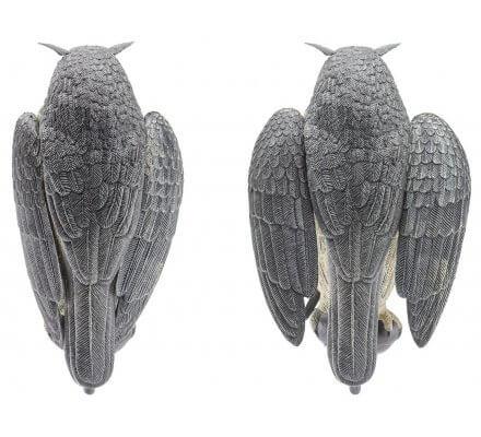 Appelant grand duc à ailes battantes