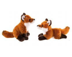 Couple de renards