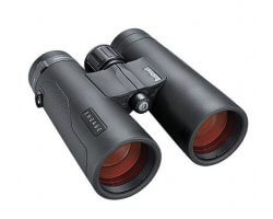 Jumelles BUSHNELL engage EDX 8X42