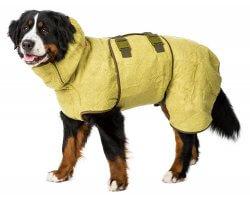 Couverture absorbante pour chien Supreme SICCARO