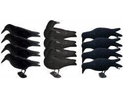 Pack corbeaux floqués actifs