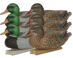 Pack 6 appelants canards colverts HD GHG