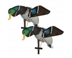 Appelant colvert femelle ailes tournantes électriques Lucky HD LUCKY DUCK