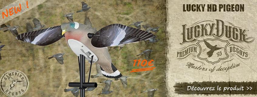 Appelant motorisé Lucky HD Pigeon