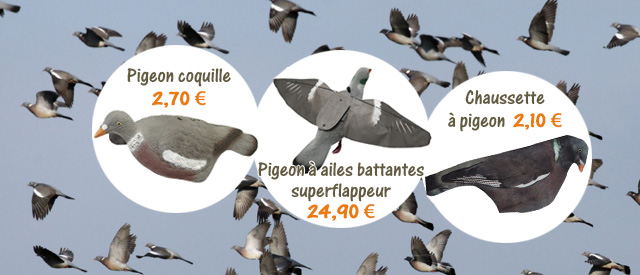 Chasse du pigeon