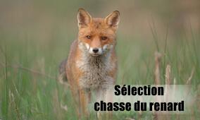 Equipement pour la chasse du renard